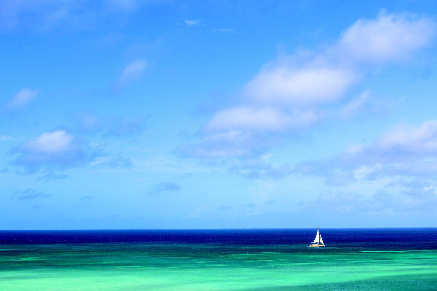 Sail Trip.jpg