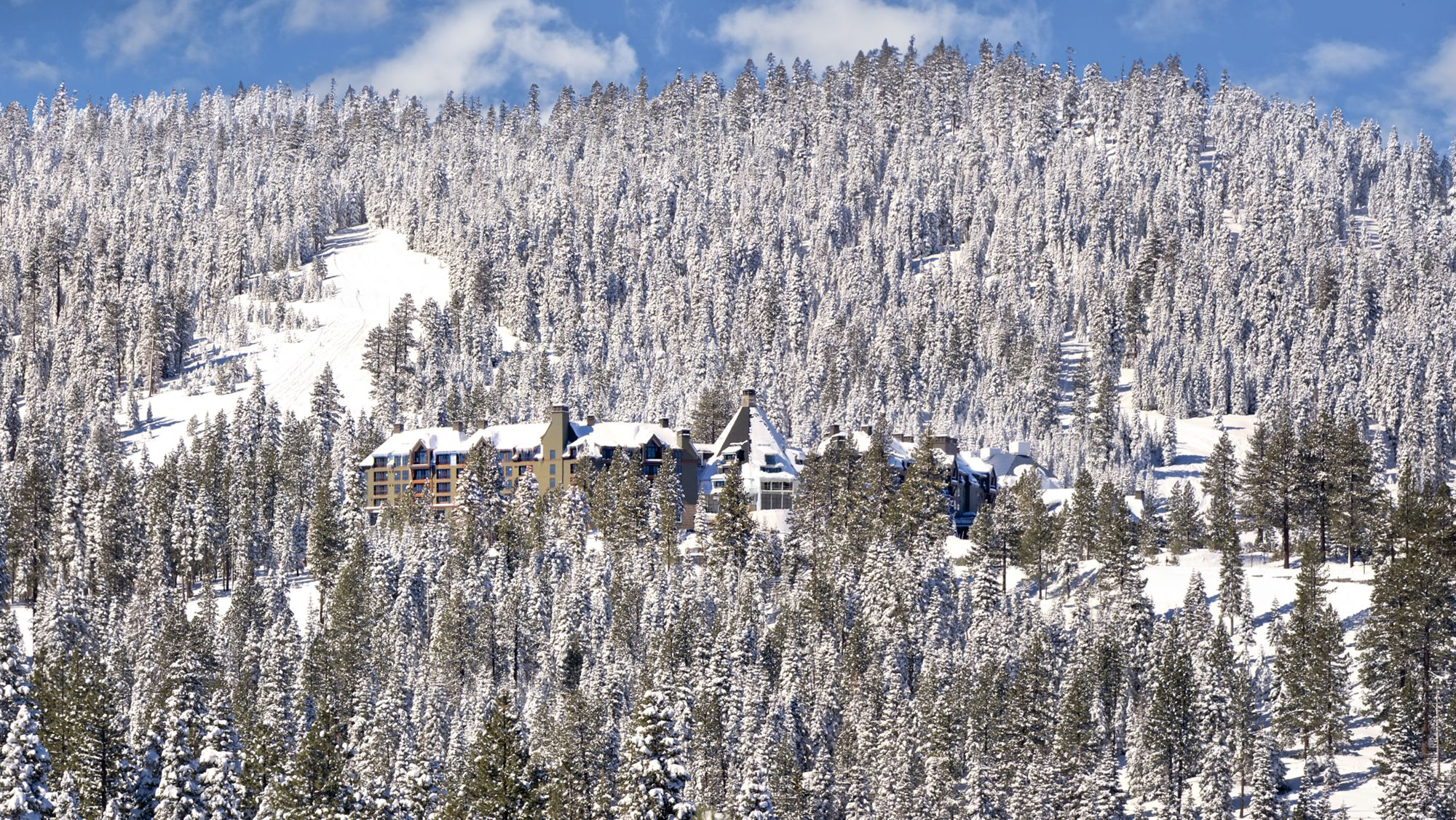 Ritz_Ski_Seasons.jpg
